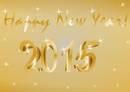 bilan 2014, projets 2015